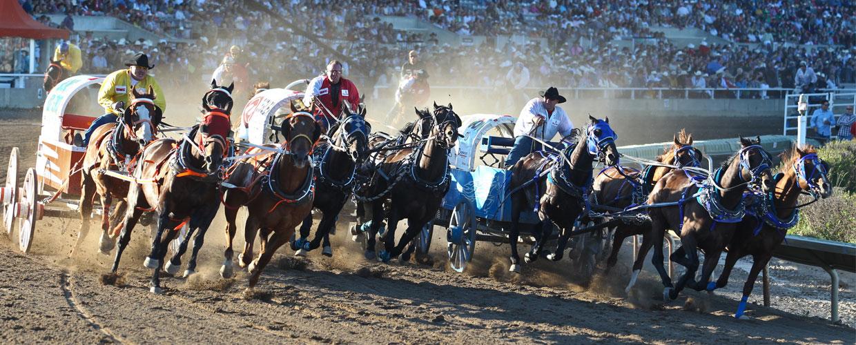 Canada m. det verdensrømte Calgary rodeo (Stampede), Få de største naturoplevelser, landbrug i XXL-format samt de verdensberømte Calgary rodeo-shows